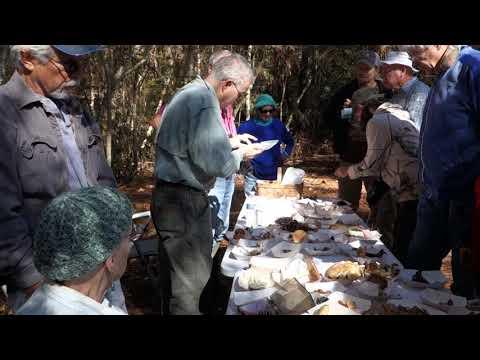 Mushroom Walk at Watson Preserve November 2019 David Lewis