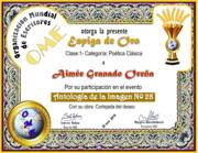 CERTIFICADOS ANTOLOGÍA DE LA IMAGEN 28