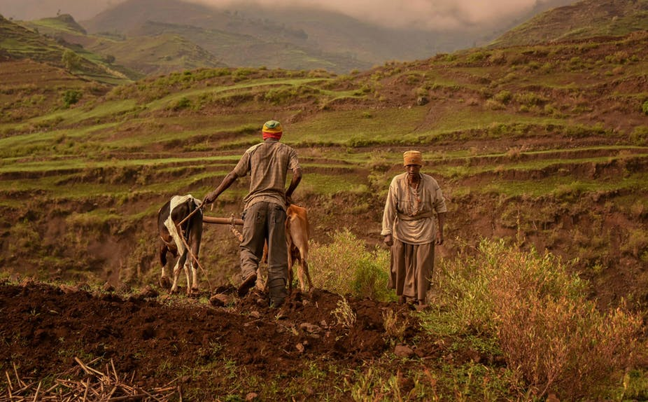 Ethiopia is making maps to help improve soil health