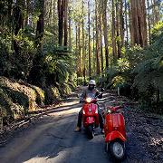 Adventure ride - Alexandra, Eildon Weir and Cheviot Tunnel  - 1 March 2020