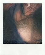 the body transfiguration