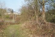 D16455 SMJ Trackbed @ Towcester 23.3.19