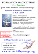 Formation magnetisme session 1 par Colette Salvanez