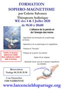 Formation magnetisme session 5 par Colette Salvanez