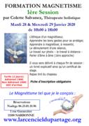 Formation magnetisme session 1 par Colette Salvanez