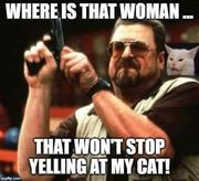 Stop yelling at my cat
