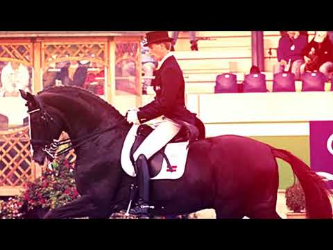 In Memory Of Don Schufro - Blu Hors Grand Prix Dressage Stallion