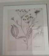pencle sketch1