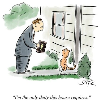 """Orange cat answering the door to find a door-to-door missionary: """"I'm the only deity this house requires."""""""