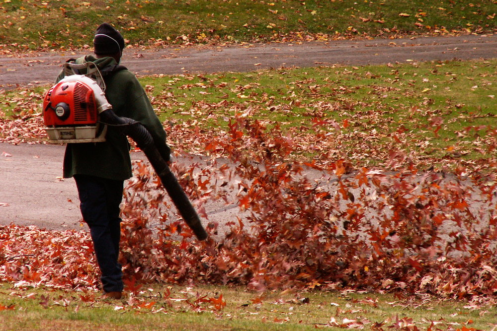 Are leaf-blowers killing our planet?