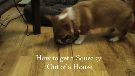 How to get a Squeaky out of a House