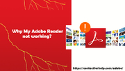 Why My Adobe Reader not working-