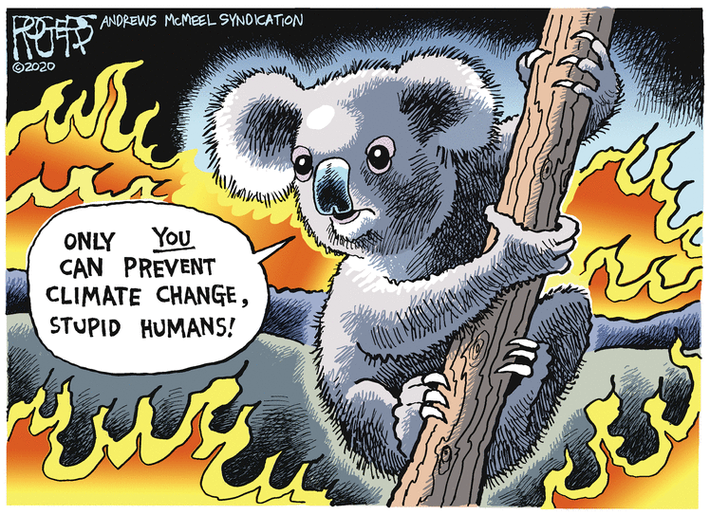 "Koala clinging to a branch in a wildfire: ""Only YOU can prevent climate change, stupid humans!"""