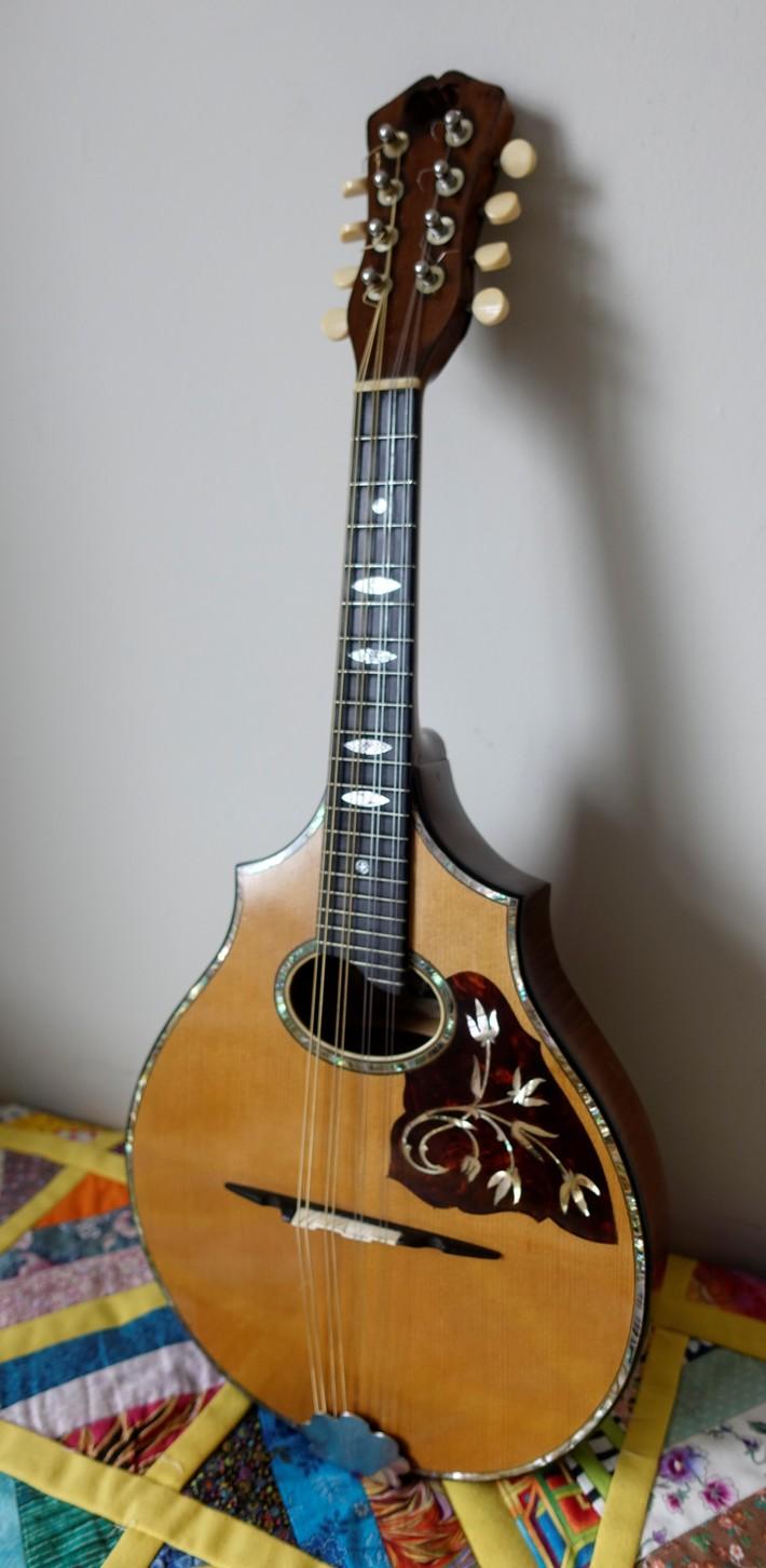 Vega Style 207