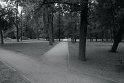 Park in Warsaw