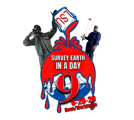 Survey Earth in a Day