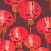 """งาน """"The Night of Chinese Festival"""""""