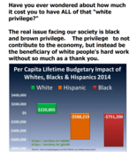 Cost or Profit to Economy by Race