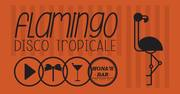 Famingo, Disco Tropicale at Mona's bar 1st February 9pm-1am Free