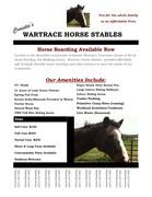 Wartrace Horse Stables Higgins Road Brochure