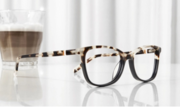 Sustainable Sunglasses and Glasses with ECO®