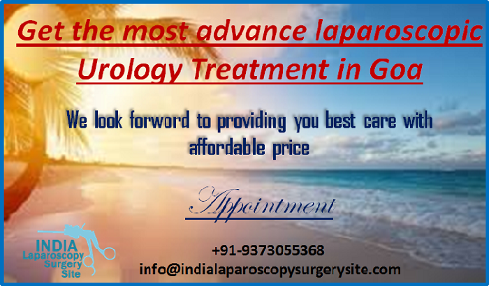 Overcoming Urologic Conditions with Low Cost Urology Treatment in Goa