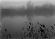 Στη λίμνη με ομίχλη (Αναλογική)