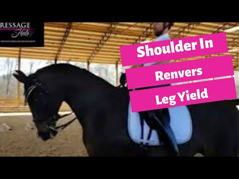 Shoulder In, Renvers To Leg Yield With Conrad Schumacher