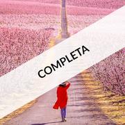(COMPLETA) - 1 dia: EL CASTELL TEMPLER DE GARDENY + AUDIOVISUAL + ESGLESIA STA Mª GARDENY + RUTA DELS ARBRES FLORITS D'AITONA + BUS - VISITES GUIADES - DINAR OPTATIU!!