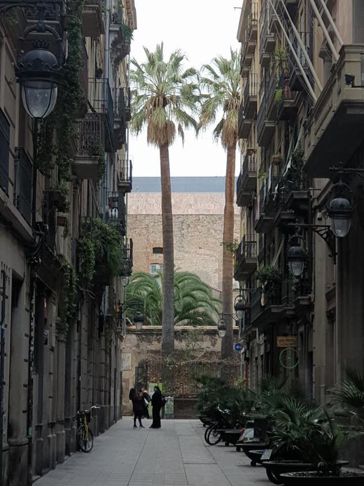 Secrets de Ciutat Vella - Visita Guiada - 08/02/2020