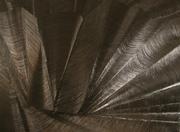 Lumières noires cicatrices SILLON 1 130x95