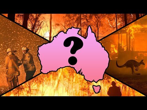 What Were the Australian Bushfires Really About?