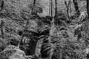 Porters Creek Trail, Fernbranch Falls, 2-20-20