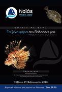 """Ομιλία με θέμα """"Ξένα είδη στις θάλασσες μας"""""""