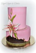 Tabby's Birthday Cake