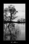 Flood of River Ruhr II