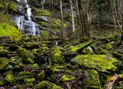 Fernbranch Falls, 3-13-20