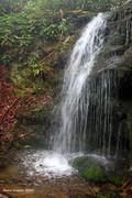 Grayback Falls 2