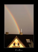 Big Brother is watching a Rainbow