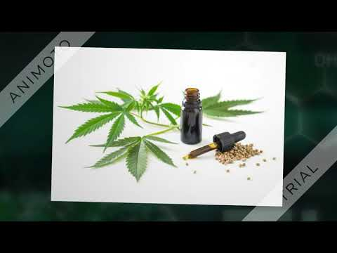 Venice Beach Cannabis Dispensary