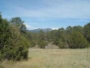 East Mountain Beeks