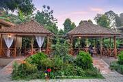 Jungle Safari Resorts