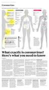 Coronavirus section_Page_04