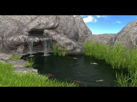 animation aquatique