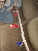 patriotic walking stick