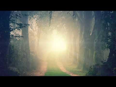 Enter the Soul Sanctuary