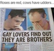 Gay lovers find out they are brothers