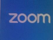 Zoom/Skype depos