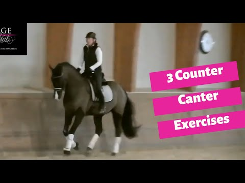 3 Exercises To Improve Your Counter Canter