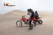 Desert safari LOGO